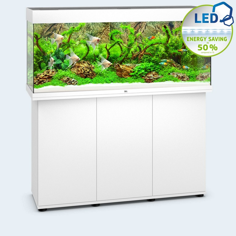 Juwel Aquarium Rio 240 Led intended for dimensions 1958 X 1958